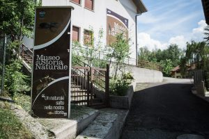 museo di storia naturale- 26